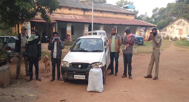 Khabar Odisha:12-kg-of-cannabis-seized-from-Kandhamal-Four-arrested