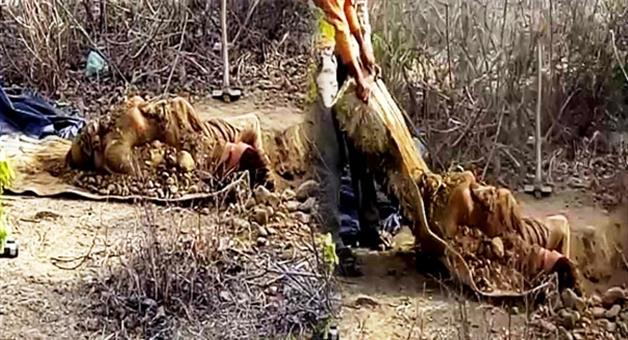 Khabar Odisha:woman-died-body-came-out-from-ground