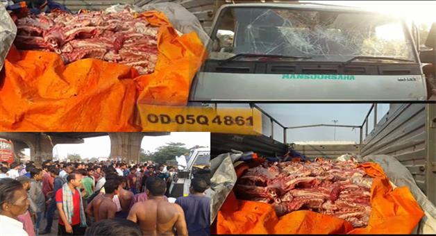 Khabar Odisha:A-mini-truck-full-of-cow-meat-seized-in-BBSR