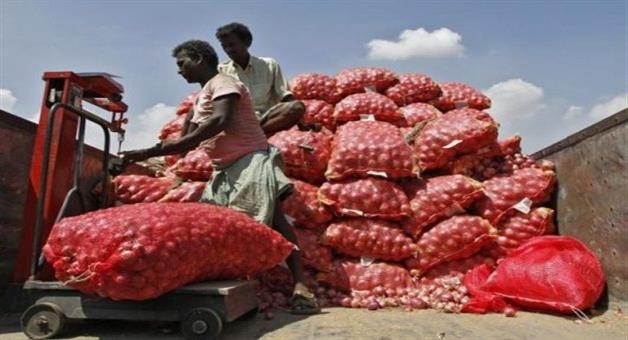 Khabar Odisha:Onion-distress-sell-in-Kalahandi-and-balangir-3-officer-go-to-check-the-situation