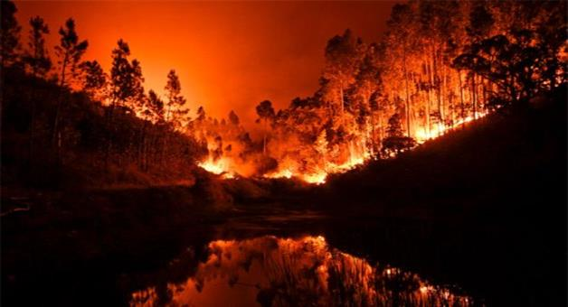 Khabar Odisha:Fire-in-portugal-forest-claims-43-lives-biggest-tragedy-in-years