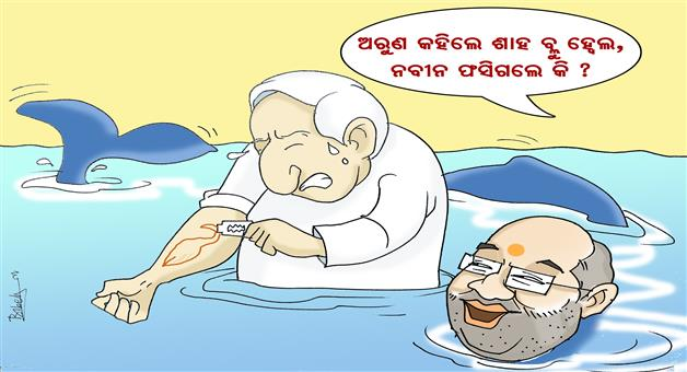 Cartoon Odisha: Blue-Whale-Game-Naveen-Pattnaik-BJD-Arun-Sahu-Amit-Shah