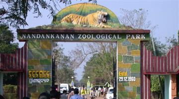 Khabar Odisha:2-Tiger-Child-birth-in-Nandankanan-Zoo