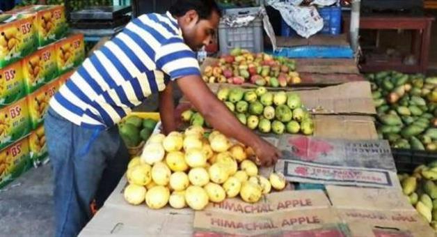 Khabar Odisha:20-crore-mango-business-in-4-month