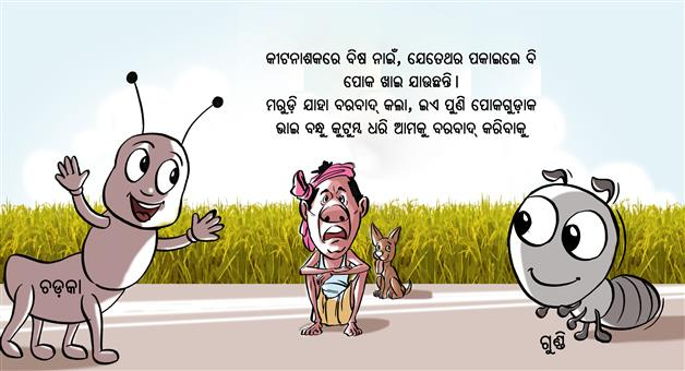 Khabar Odisha:Farmer-Suicide