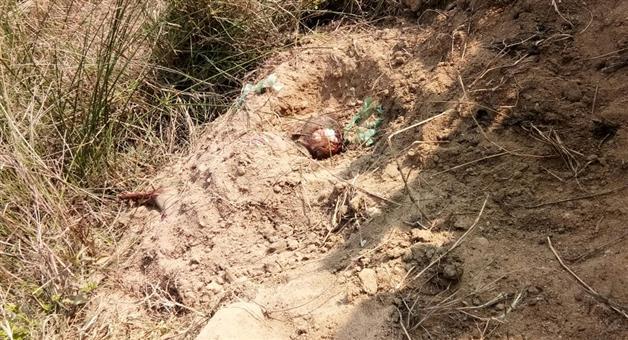 Khabar Odisha:Women-dead-body-rescued-in-bargarh