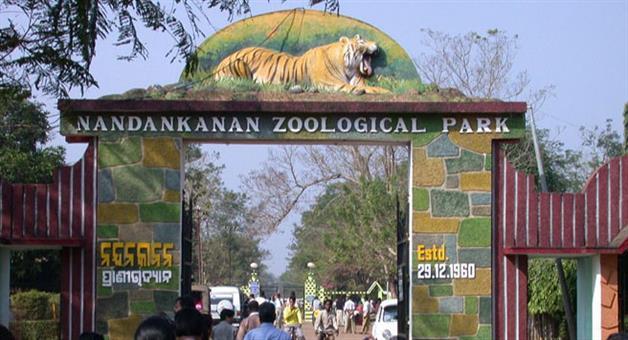 Khabar Odisha:Baranga-nandankanan-Stopped-for-15-days