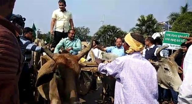 Khabar Odisha:BCJD-Strikes-For-Petrol-rate-Increase-India