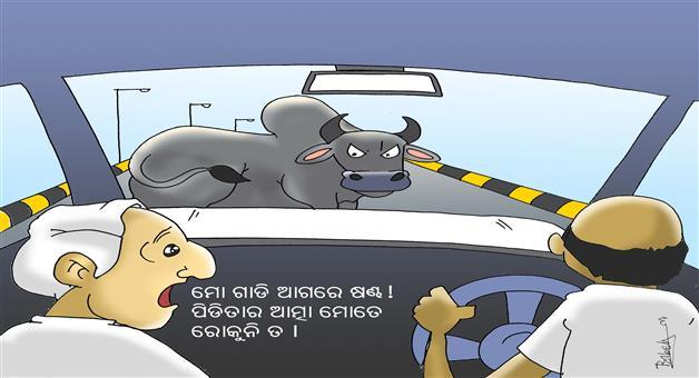 Khabar Odisha:Kundli-Gang-Rape-Suicide-Odisha-CM