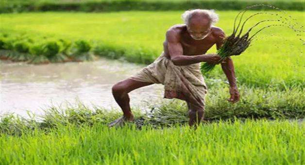Khabar Odisha:union-budget-2018-jaitley-gave-bonanza-to-farmers