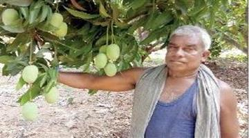Khabar Odisha:Anugul-farmer-got-4-lakhs-income-annual-from-cultivation