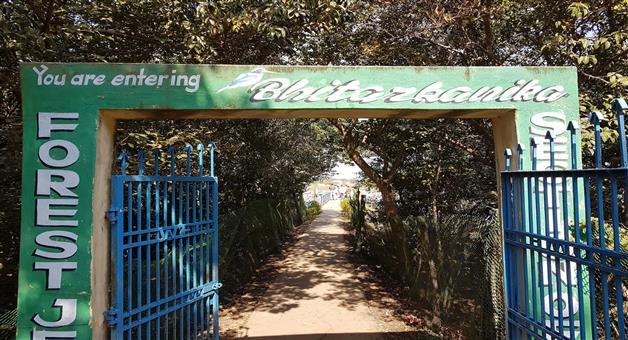 Khabar Odisha:Bhitarakanika-National-open-today-After-3-months