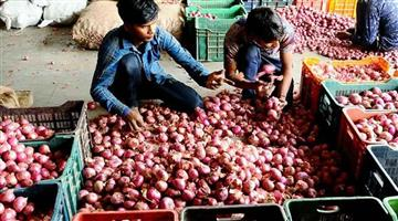 Khabar Odisha:Business-Government-contracts-to-import-12660-tonnes-of-additional-onions