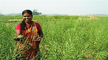 Khabar Odisha:CM-launching-agriculture-production-cluster