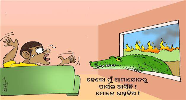 Khabar Odisha:Cartoon-Amazon-forest-in-fire