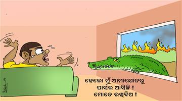 Khabar Odisha:Cartoon-Amazon-forest-in-fire