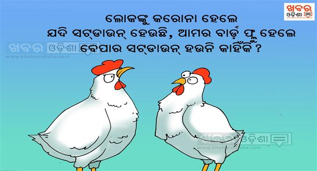 Khabar Odisha:Cartoon-Bird-flu