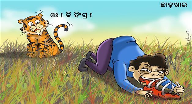 Khabar Odisha:Cartoon-Khabar-Odisha-Chhad-Khai