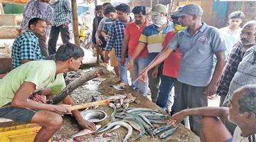 Khabar Odisha:Crowds-gather-at-Amish-Bazaar-this-year-to-celebrate-the-last-Raj-in-Karona-Katkana