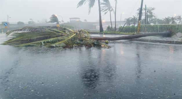 Khabar Odisha:Cyclone-Titli-Odisha