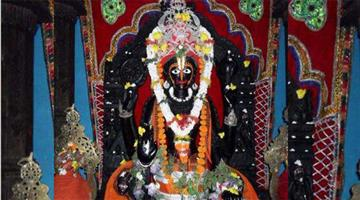 Khabar Odisha:Darshan-of-lord-alarnath-starts-from-today