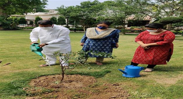 Khabar Odisha:Dharmendra-Pradhan-plantation
