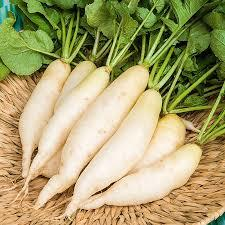 Khabar Odisha:Eat-radishes-in-the-winter