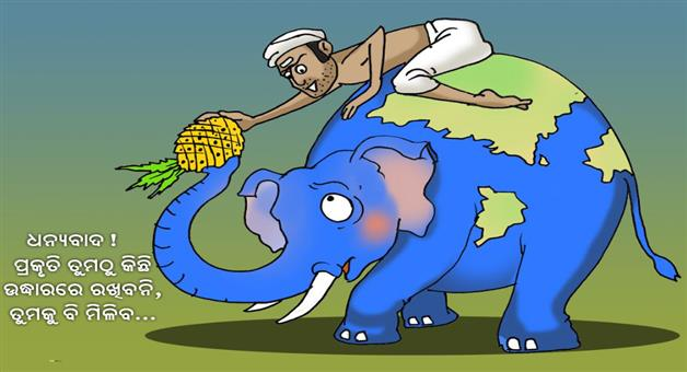 Cartoon Odisha: Elephant-dead