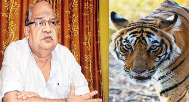 Khabar Odisha:Forest-minister-said-sundari-not-sent-to-back