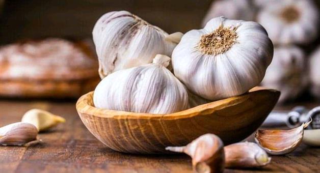Khabar Odisha:Garlic-benefits-in-winter