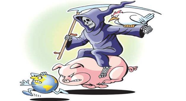 Khabar Odisha:Heath-Swine-flu-Seven-new-cases-of-swine-flu-in-Lucknow-tally-touches-111