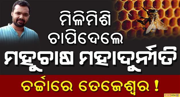 Khabar Odisha:Honey-bee-bigScam-Odisha--Third-Floor-Link