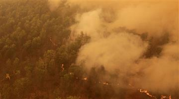 Khabar Odisha:International-People-die-due-to-fierce-fire-in-the-forest-of-Australia