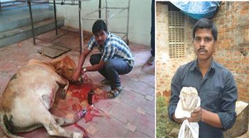 Khabar Odisha:Jagatsinghpur-youth-boy-helps-animal