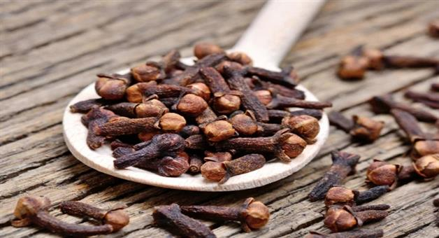 Khabar Odisha:Lifestyle-Odisha-Health-benefits-of-cloves