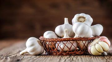 Khabar Odisha:Lifestyle-Odisha-Health-benefits-of-garlic