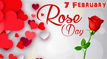 Khabar Odisha:Lifestyle-Odisha-Valentines-week-Started-today-is-Rose-day