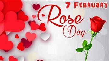 Khabar Odisha:Lifestyle-Odisha-Valentines-week-Started-today-is-Rose-day
