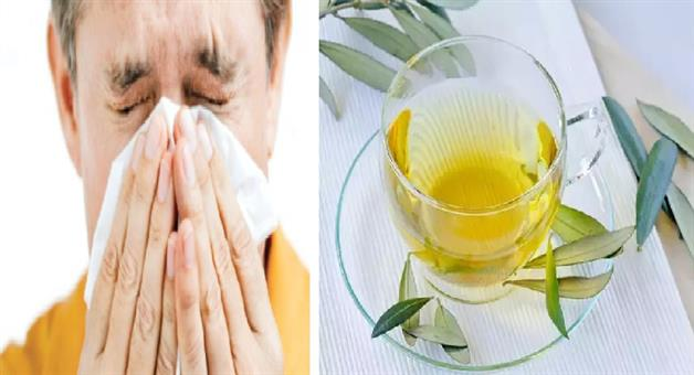Khabar Odisha:Lifestyle-Odisha-orange-peel-tea-to-combat-cough-and-cold
