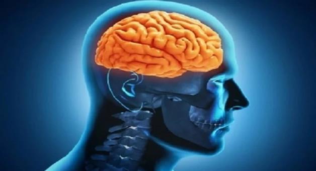Khabar Odisha:Lifestyle-Odisha-womens-brains-are-four-years-younger-than-men