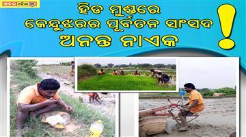 Khabar Odisha:MP-Ananta-Nayak-farmer-works-keonjhar