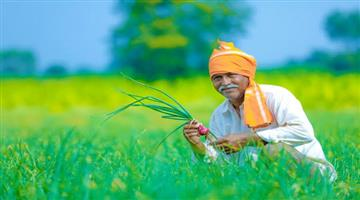 Khabar Odisha:Msp-increased-for-crops-by-govt