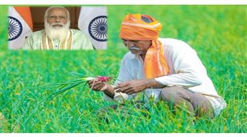Khabar Odisha:Nation-3000-fake-farmers-were-taking-advantage-of-PM-Kisan-Yojana-in-Bhojpur-district-of-Bihar