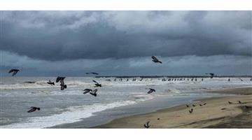 Khabar Odisha:Nation-Maharastra-Nisarg-cyclone-Maharashtra-Mumbai-NDRF-teams-rescue-operation