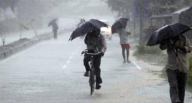 Khabar Odisha:Nation-Maharastra-One-dead-50-trees-uprooted-as-heavy-rains-wreak-havoc-in-Pune