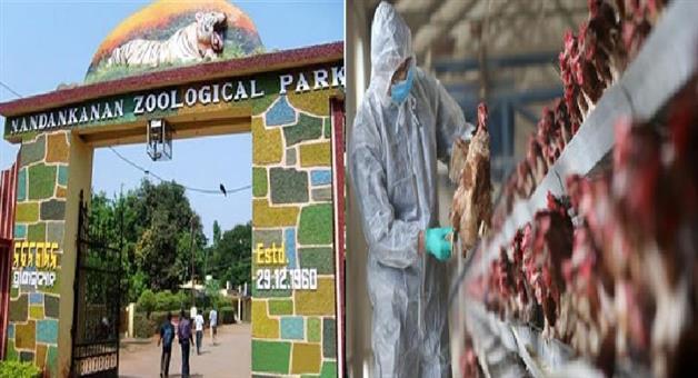 Khabar Odisha:National-news-Walk-through-aviary-of-Nandankanan-Zoo-will-be-closed-to-visitors