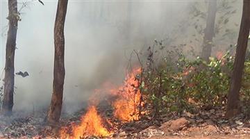 Khabar Odisha:ODRAF-Team-taken-charge-for-Jungle-fire-in-Odisha