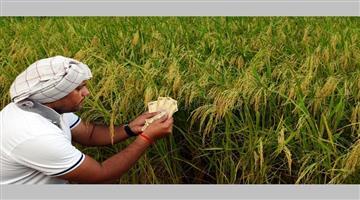 Khabar Odisha:Odisha-Assembly--Farmers