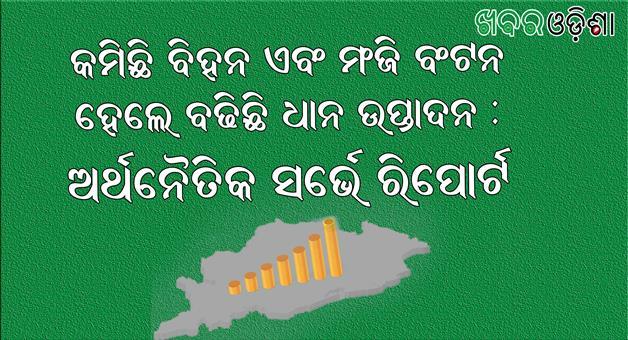 Khabar Odisha:Odisha-Economic-Survey-Report-Agriculture