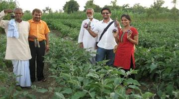 Khabar Odisha:Organic-farming-gives-more-profit